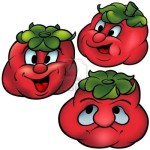 1738423-trois-tomates--haut-detaillees-et-colore-dessin-anime-illustration-vectorielle